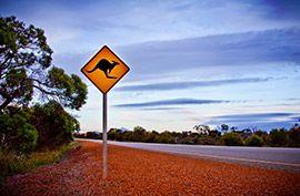 topic: australia credit: http://www.independenttraveler.com/destinations/australia-new-zealand/australia