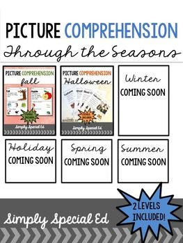Picture Comprehension through the seasons, perfect for assessment, ELL, early childhood, and children with special needs & Autism!