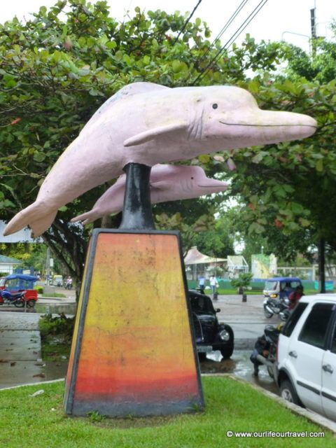 The pink dolphins are also popular here, not only around Manaus