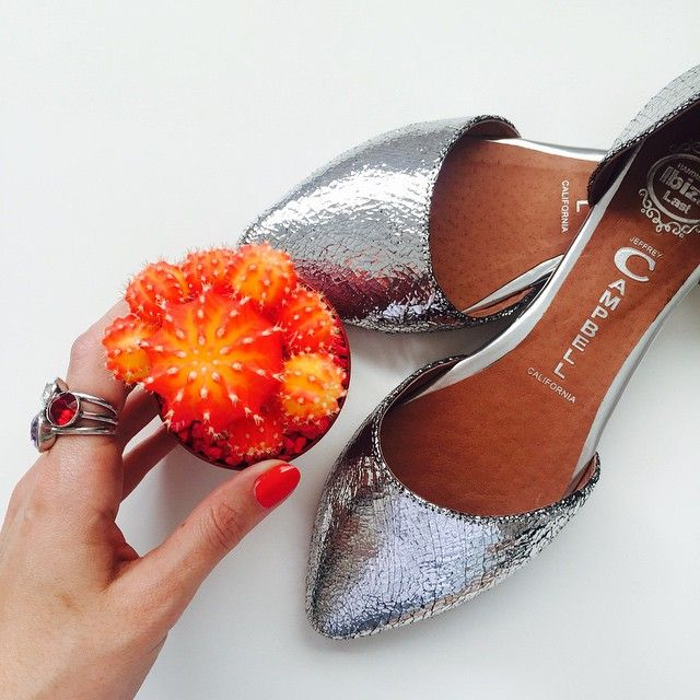 I bought a cactus...and some blingy flats 💛 #bling #cactus #silver