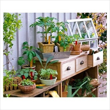 drawers and potting table