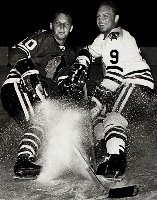 Dennis and Bobby Hull