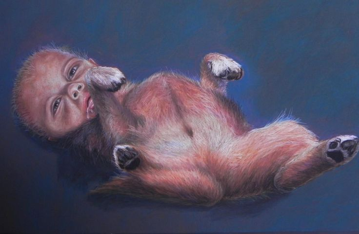 Society's good dogs III (The ignorant) - Pastel on Paper Artist: Ellenor Hastie (Facebook)  *FOR SALE