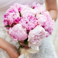 Pink Twinkle Bridal Bouquet - Pink Twinkle Bridal Bouquet > View Full-Size Im...   Pink, Aud, Bouquet, Purchased, Twinkle   Bun
