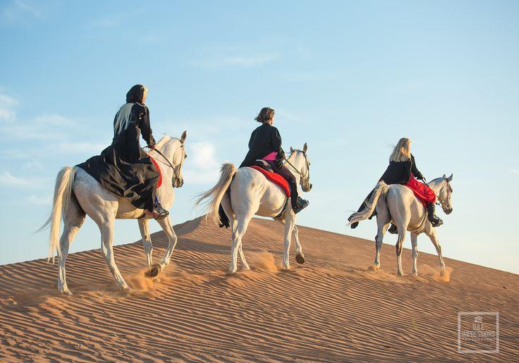 Reiten in der Wüste von Ras al Khaimah - Vereinigte Arabische Emirate #Reiten #Wüste #RasalKhaimah #Emirate #Dubai #Sonnenuntergang