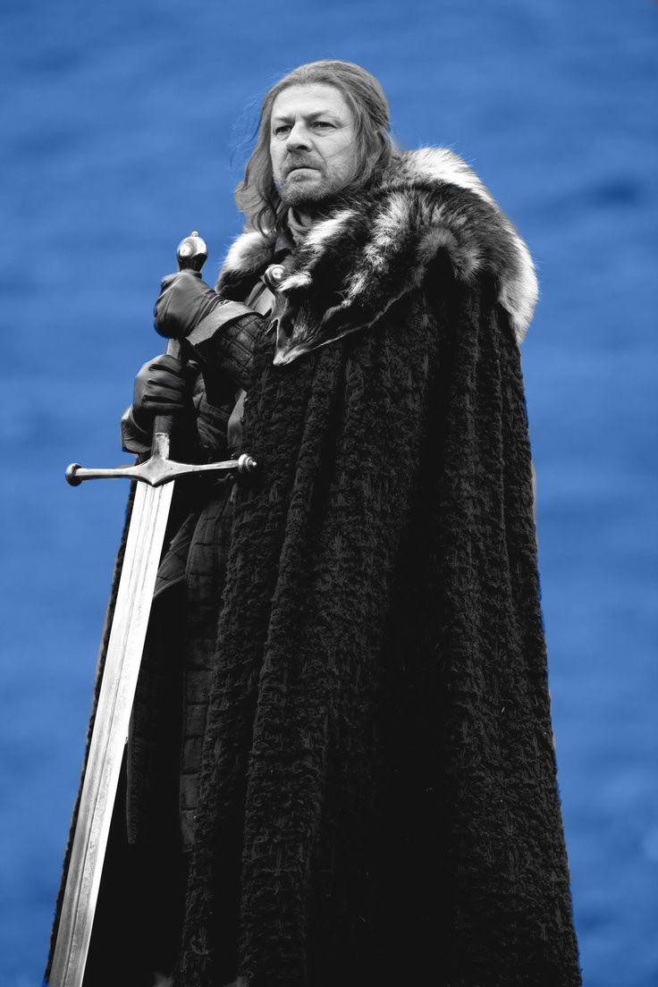 Eddard Stark 'Winter is coming' Funny p, Nerd, Funny memes