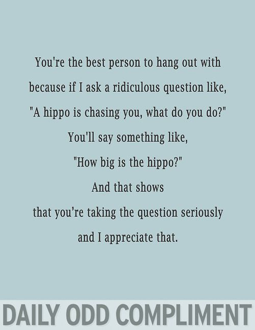 "Daily Odd Compliment: You're the best person to hang out with because if I ask a ridiculous question like, ""A hippo is chasing you, what do you do?"" You'll say something like, ""How big is the hippo?"" And that shows that you're taking the question seriously and I appreciate that."