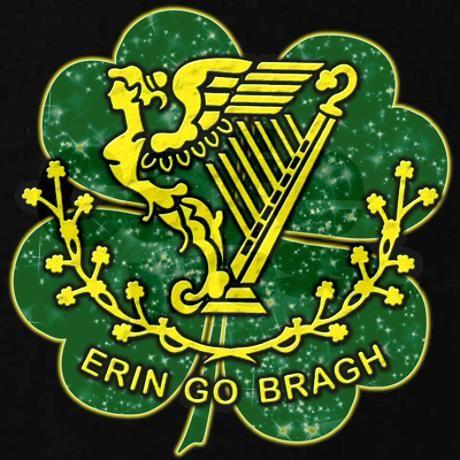 Erin Go Bragh   erin_go_bragh_hoodie_dark.jpg?color=Black&height=460&width=460 ...