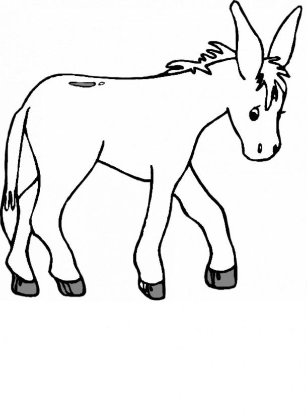 d is for donkey coloring pages - photo #13