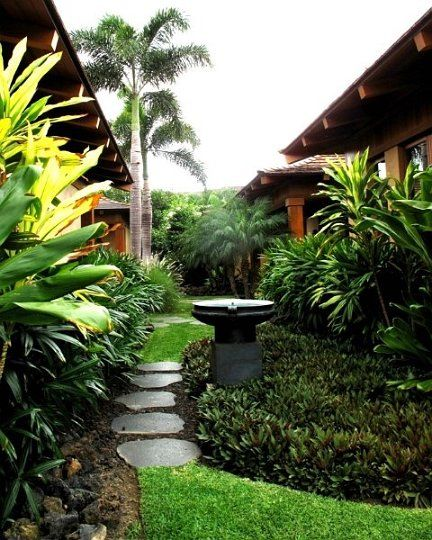 Tropical Home Garden Design Ideas: 618 Best Images About Tropical Garden Idea's On Pinterest