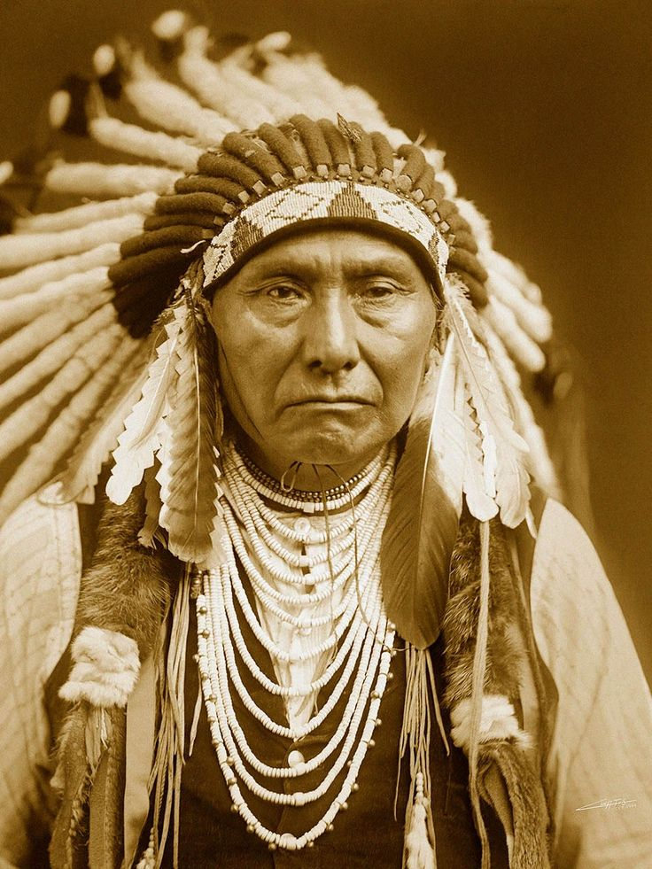 Wikia Is A Free To Use Site That Makes Money From Advertising We Native American Historynative American Indiansnative
