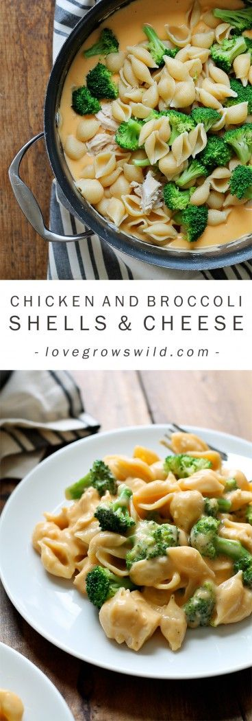 Perfectly creamy homemade shells and cheese made with chicken and broccoli. Everyone loves this easy weeknight meal! Get the recipe at LoveGrowsWild.com