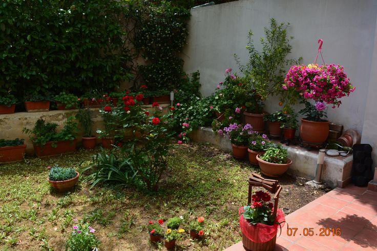 Κατηγορία: Κήποι - Λυδία