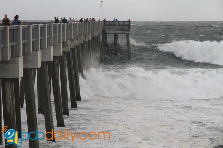 88 best images about panama city beach florida on for Surf city pier fishing report facebook