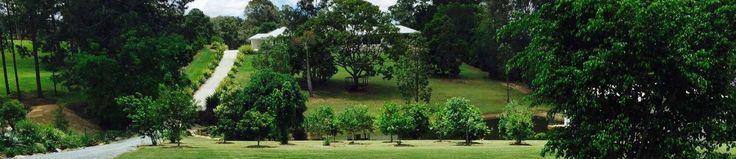 Acreage mowing- Brisbane Northside