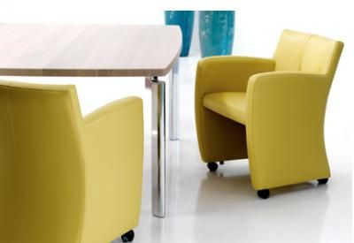 Dining Chair on Dining Chair With Wheels Chair Pads