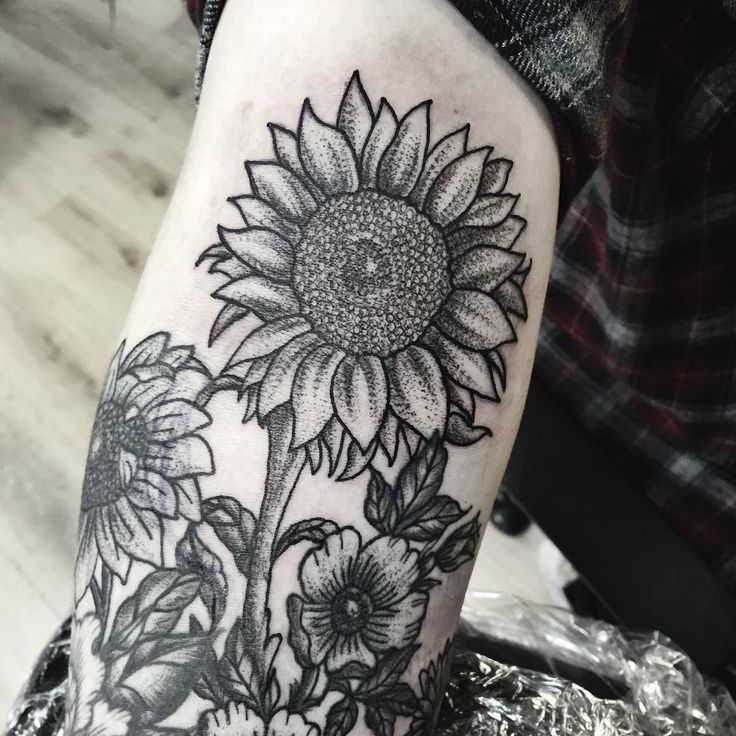 A sunflower for my shoulder