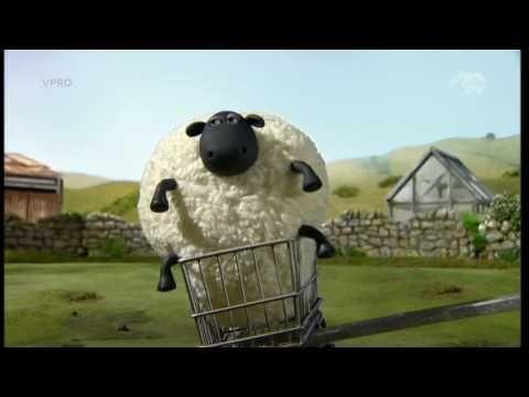 Shaun het schaap - Bewegen Met Shaun - YouTube