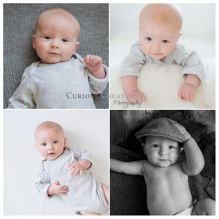Baby photography in cornwall milestone session for charlie at my studio near truro curious creatures babies pinterest truro and photography