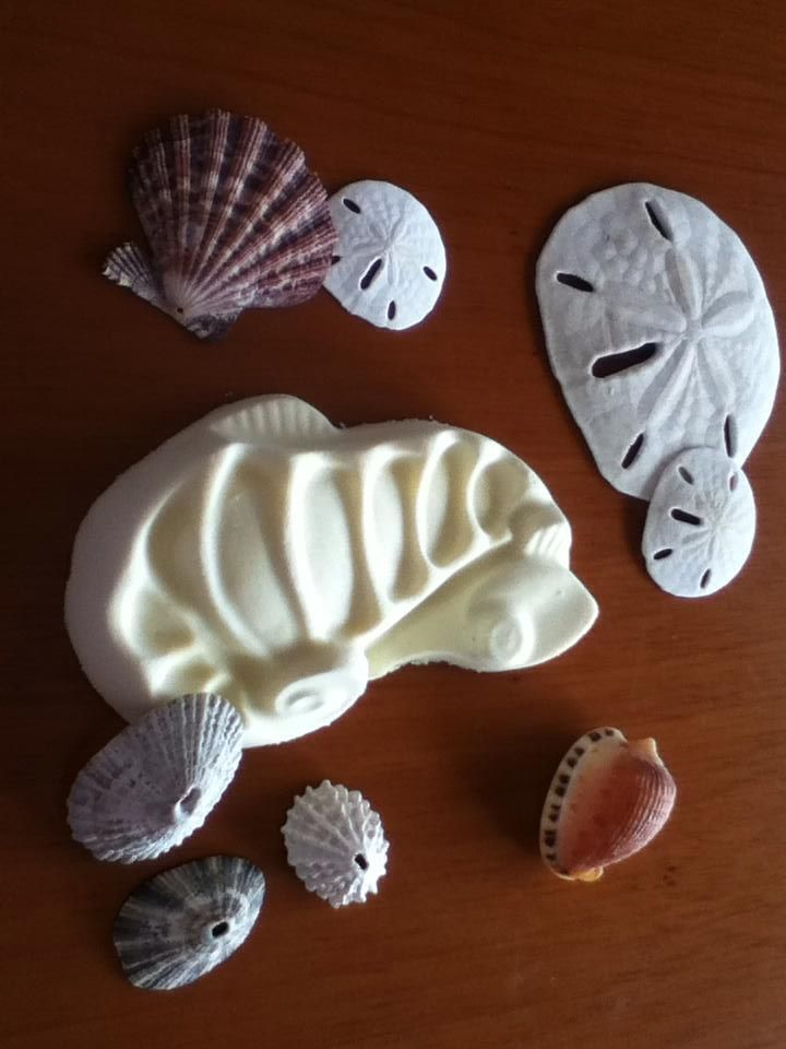 Jabón Cabalito De Mar