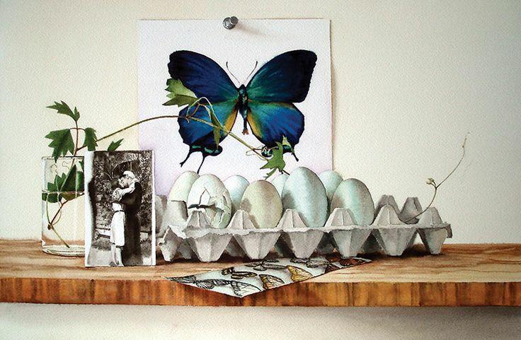 Butterfly / Stephanie Anderson / 12x18.5_19x26FR