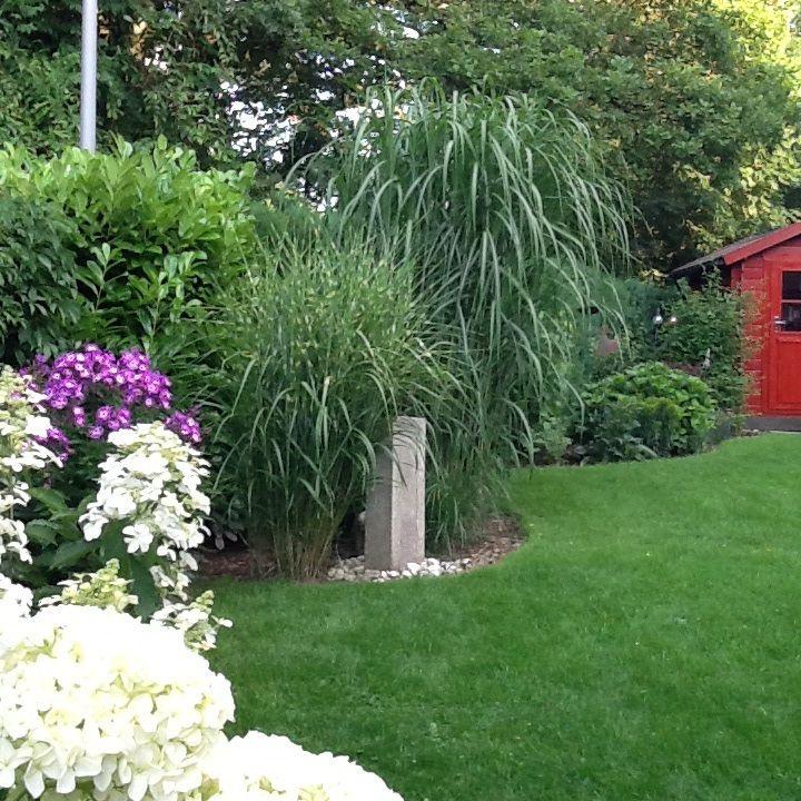 66 besten Garten Bilder auf Pinterest Gärten, Stauden und Dressings - garten mit grasern und kies