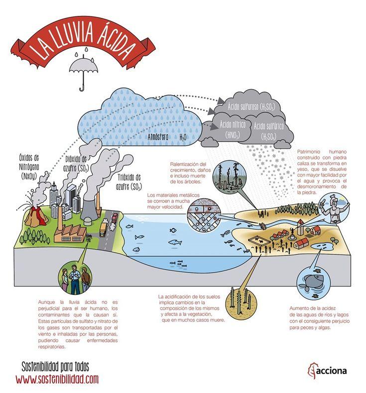 ¿Qué es la lluvia ácida? en 2020 (con imágenes) Lluvia