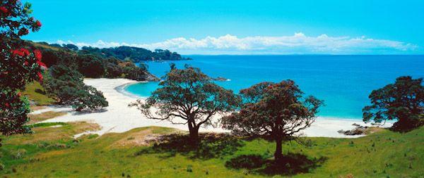 2123 Best Beautiful New Zealand Images On Pinterest New Zealand Kiwiana And Maori Art