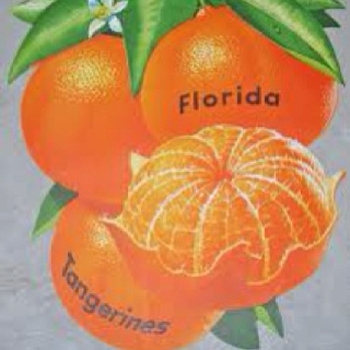 Vintage Florida Tangerines! Man they used to be so sweet and peel so easily! Tangerines remind me of the beginning of school.