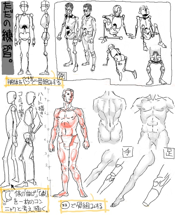 anatomy of human body and movements: Art Atanomy, Student Sketchbooks, Art Instruction Tutorials, Human Anatomy, Anatomy Help, Art Lettering Painting, Human Body, Drawing