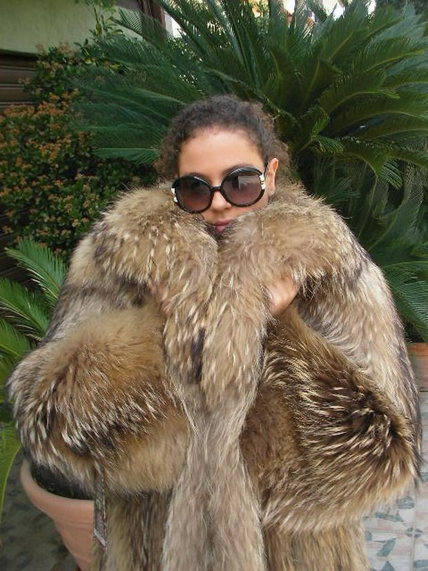 Snuggle in tanuki fur! | Finn Raccoon/Tanuki | Fur, Fur ...