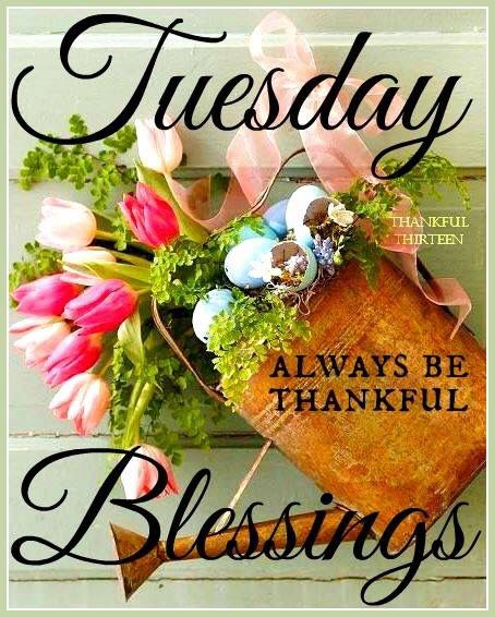 Have a blessed Tuesday! ❤️