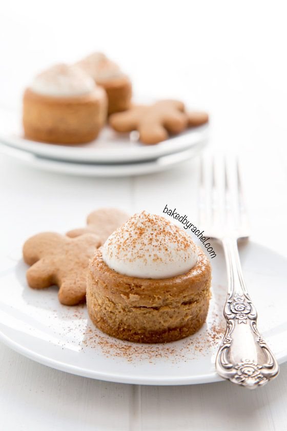 Mini gingerbread cheesecake recipe from @bakedbyrachel The perfect bite size holiday dessert!