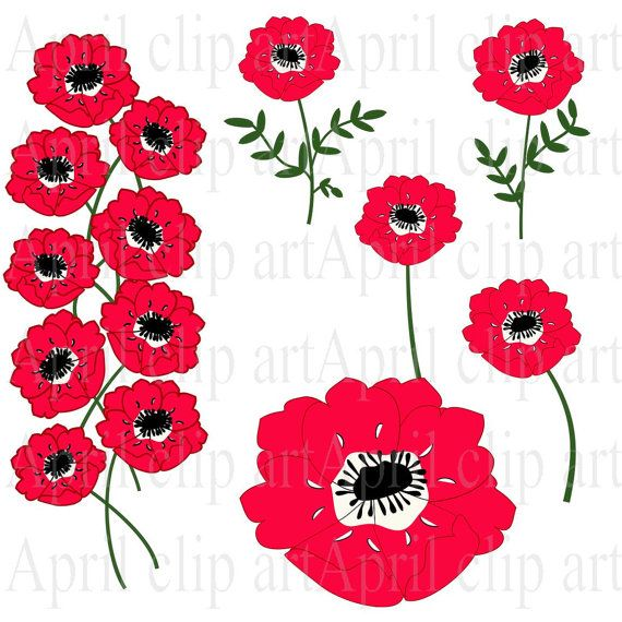 Flowers Clipart, 8 Red Anemone graphics, clip art set INSTANT DOWNLOAD- for invitation?