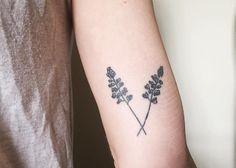icelandic lupin tattoo - Google Search