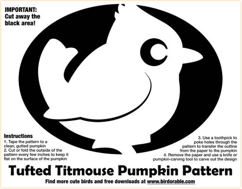 52 best images about pumpkin patterns on pinterest