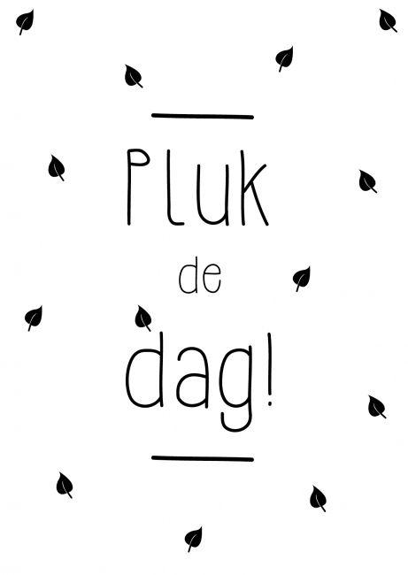 Pluk de dag! Kaartje byBean. Hier verkrijgbaar: http://www.bybean.nl/9995971/kaartje-pluk-de-dag