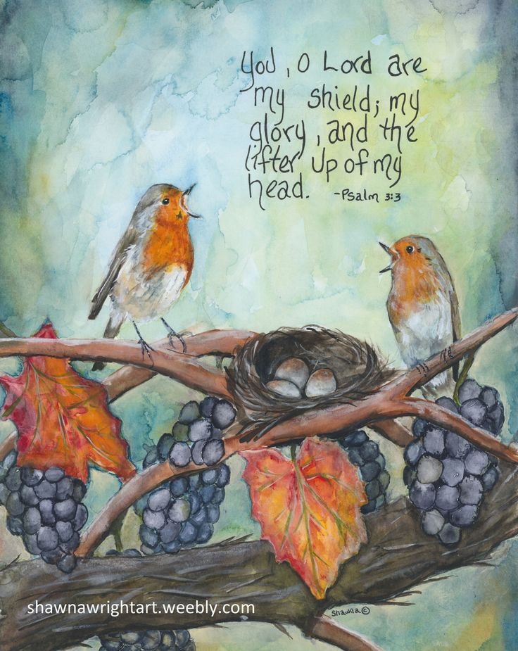 Watercolor painting of European Robins and nest with Bible Promise by Shawna Wri… – Shawna Wright Art