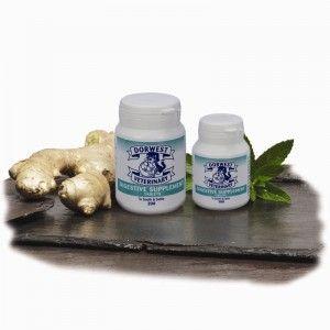 16E - Les comprimés naturels Digestion Dorwest à base de gingembre et de menthe verte sont utilisés pour apaiser et calmer le système digestif. Utiles pour soigner l'aérophagie, les flatulences et effets secondaires et les maux d'estomac chez le chien et le chat.