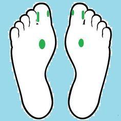 Reflexologia podal para perder peso - Puntos reflejos de las gládulas suprarrenales, la pituitaria y la tiroides