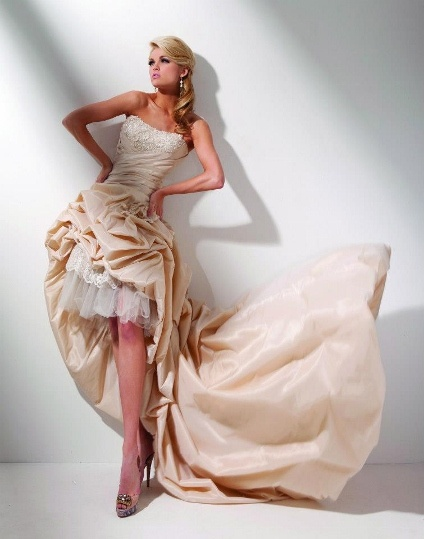Ivory Taffeta with lace & tulle by Tony Bolws code T 211281