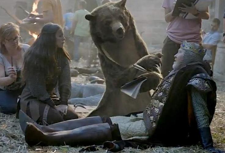 canal + the bear