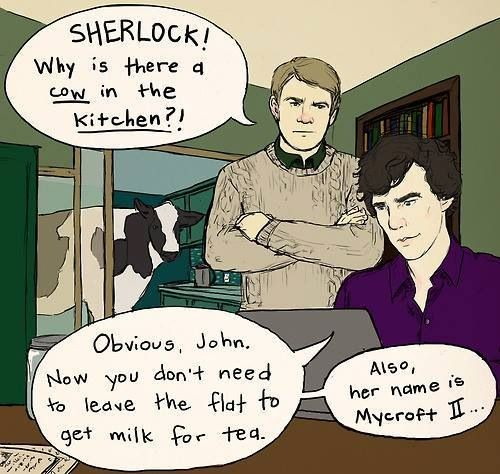 I find this hilarious in the aspect that he's referring to Mycroft to a cow, not only that, but a FEMALE cow on top of that>>>>He's basically calling Mycroft a heifer