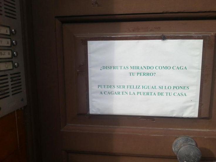 Ver esto en Cangas del Narcea y pensar en @hematocritico, todo uno. Ojocuidao, entiéndaseme. #dramaenelportal