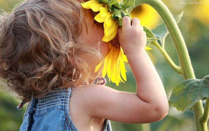 Słonecznik, Dziecko, Dziewczynka