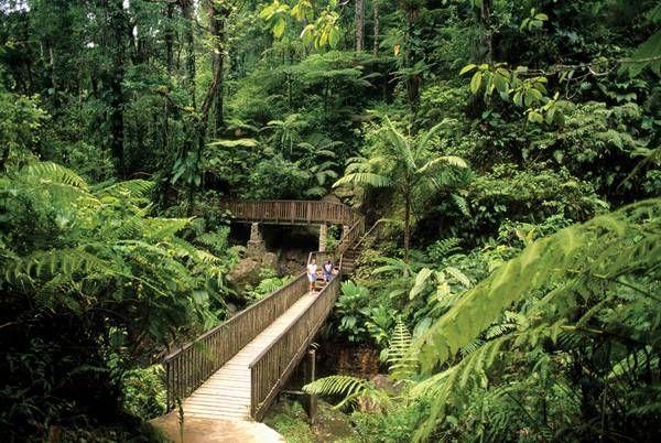 Parc National de la Guadeloupe, Guadeloupe, French Antilles