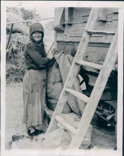 Greek Woman Fills Wheat Sack Farm Near Kozani, Macedonia Greece. July 25, 1946. Associated Press Photo.