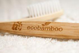 Zahnbürste aus Bambus - weich, mittel, hart - Ecobamboo