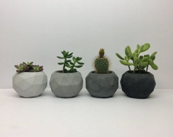 Set of 7: Tier Hexagonal Planters Geometric Concrete