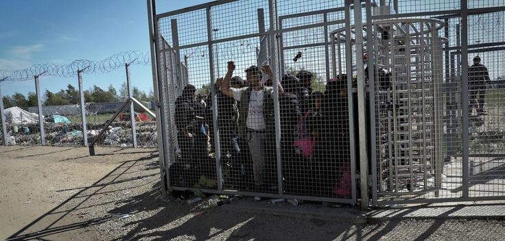 """Eva S. Balogh on Twitter: """"European Court of Human Rights on Hungary's refugeepolicy https://t.co/jFd0fArsrH https://t.co/US7OCCY8zf"""""""